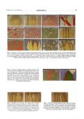 cellular-automata-models-complexity - Page 4