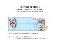 orasel lacustru - Petrescu Traian - Expert Mediu