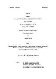 Nicolas Massé Étude moléculaire de la glycoprotéine d'attachement ...