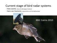 Current stage of bird radar systems