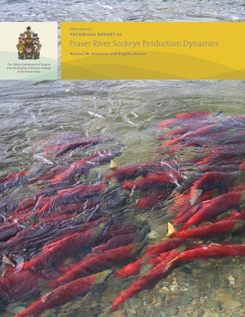 Fraser River Sockeye Production Dynamics - Watershed Watch ...