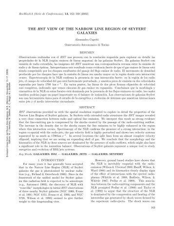 the hst view of the narrow line region of seyfert galaxies