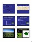 Estrutura de populações vegetais: padrão espacial - Page 4