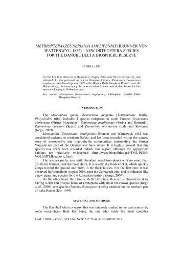 METRIOPTERA (ZEUNERIANA) AMPLIPENNIS ... - Specii Invazive
