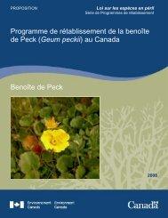 Benoîte de Peck Programme de rétablissement de ... - Species at Risk