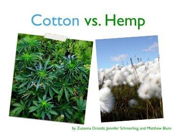 Cotton vs. Hemp
