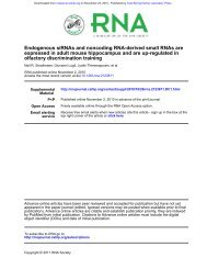 Endogenous siRNAs and noncoding RNA-derived small RNAs are ...