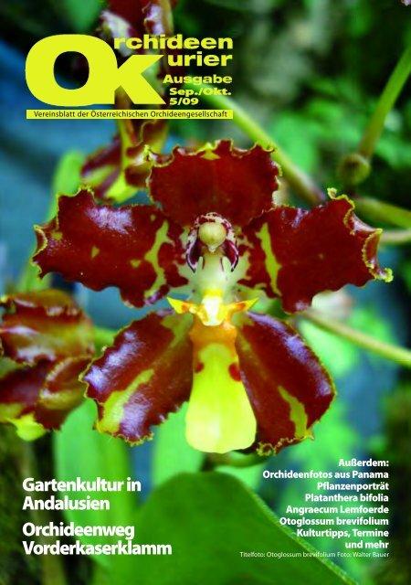 Neu im Handel: Seramis Orchideensubstrat - Austrian Orchid Society