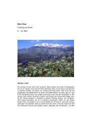 Beim Zeus Frühling auf Kreta 5. - 16. April