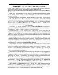 Nom 005 STPS 1998 - Normas Oficiales Mexicanas de Seguridad y ...