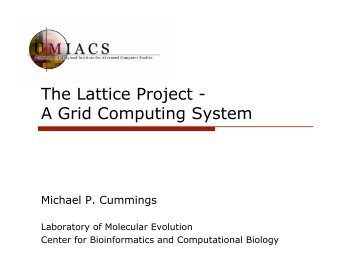 The Lattice Project - A Grid Computing System
