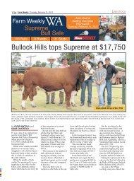 Bullock Hills tops Supreme at $17,750