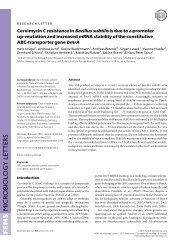 Cervimycin C resistance in Bacillus subtilis is due to a promoter ...