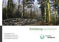 Einladung Invitation - Binding Stiftung