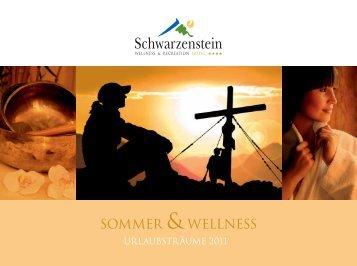 Schwarzenstein Sommer 2011 dt. - Perspektive Mittelstand