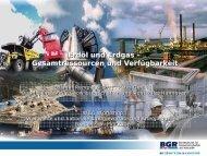 Erdöl und Erdgas – Gesamtressourcen und Verfügbarkeit ... - WEC
