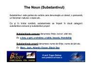 The Noun (Substantivul) - PRIETENUL cel Mare – Big BUDDY