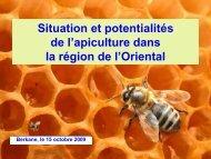Présentation du secteur apicole dans la région de l'Oriental ...