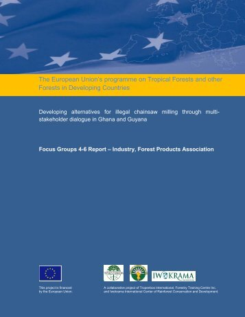 Focus Groups 4-6 Report – Industry, Forest Products Association