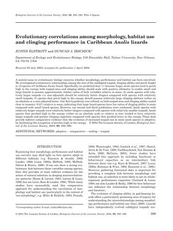 Evolutionary correlations among morphology, habitat use and ...
