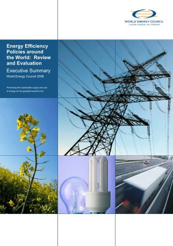 Energy Efficiency Policies around the World: Review and Evaluation ...
