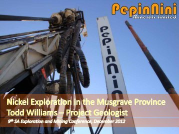 Nickel Exploration in the Musgrave Province of South Australia