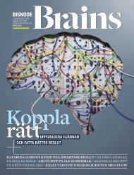 Ladda ner tidningen Brains (PDF) - Bisnode