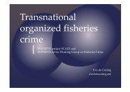 Transnational organized fisheries crime - CCAMLR