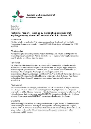 testning av mekaniska plantskydd mot snytbagge anlagt v - SLU
