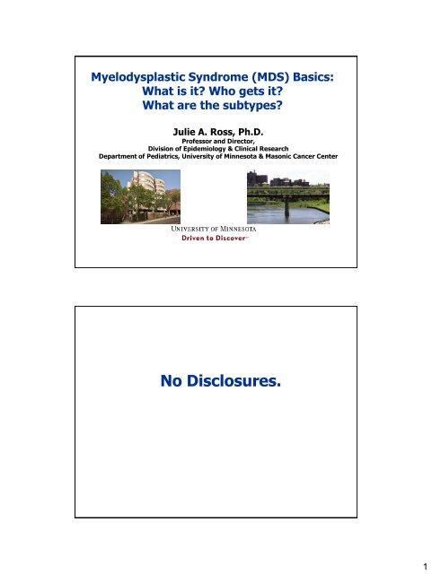 What Is Mds >> What Is It Who Gets It Aplastic Anemia Mds