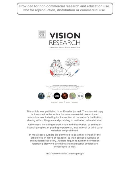 Visual perception and neural correlates of novel ... - ResearchGate