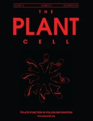 TPLATE FUNCTION IN POLLEN MATURATION - The Plant Cell