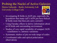 Probing the Nuclei of Active Galaxies - University College Cork