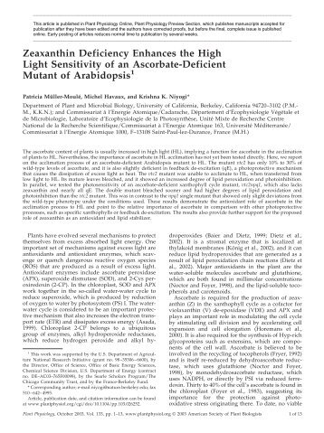 Zeaxanthin Deficiency Enhances the High Light ... - Plant Physiology