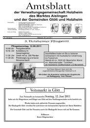 Holzheim KW 23