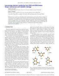 Low-energy electron scattering from DNA and RNA bases - Alexfb.com