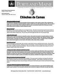 Chinches de Camas