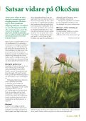 Nr. 4/2008 - Norsk Sau og Geit - Page 5