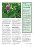 Nr. 4/2008 - Norsk Sau og Geit - Page 7