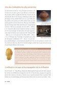 Une des civilisations les plus anciennes - Page 3
