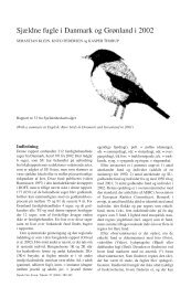 Sjældne fugle i Danmark og Grønland i 2002 - Zoologisk Museum
