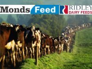 Optimising profit through improved animal nutrition – Tim ... - DairyTas