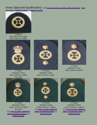 Badges Royal Marines Specialist Qualification SQ Driver - RM badges