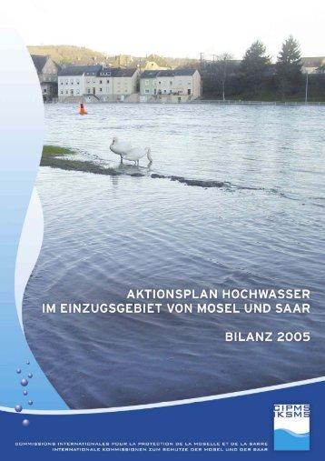 Umsetzung des Aktionsplanes Hochwasser 2001-2005 - iksms