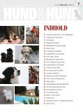 Hunde - DynamicPaper - Page 7