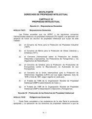 Capítulo 16: Propiedad Intelectual - Ministerio de Comercio e ...