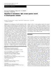 Apis cerana queens reared in mixed-species colonies