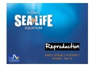 Reproduction - Sydney Aquarium