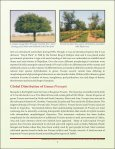 details - Central Soil Salinity Research Institute - Page 7