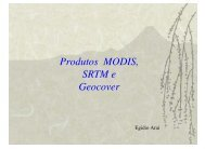 Produtos MODIS, SRTM e Geocover - INPE/OBT/DGI